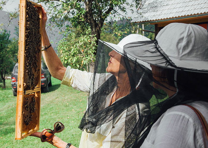 lake_bled_and_traditional_beekeeping_2